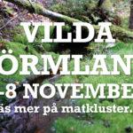 VILDA SÖRMLAND_2020_Bildspel